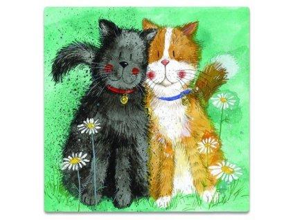 magnetka kočka s kočkou kočičí sbor alex clark 3