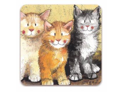 narozeninové blahopřání kočka s kočkou kočičí alex clark 2