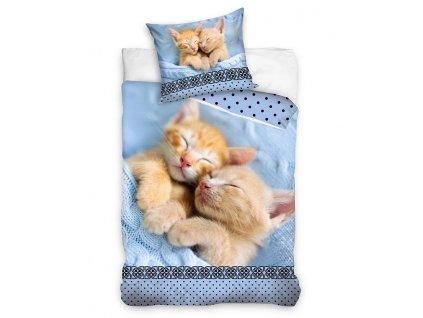 povlečení kočka s kočkou kočičí kočičí dvě koťata