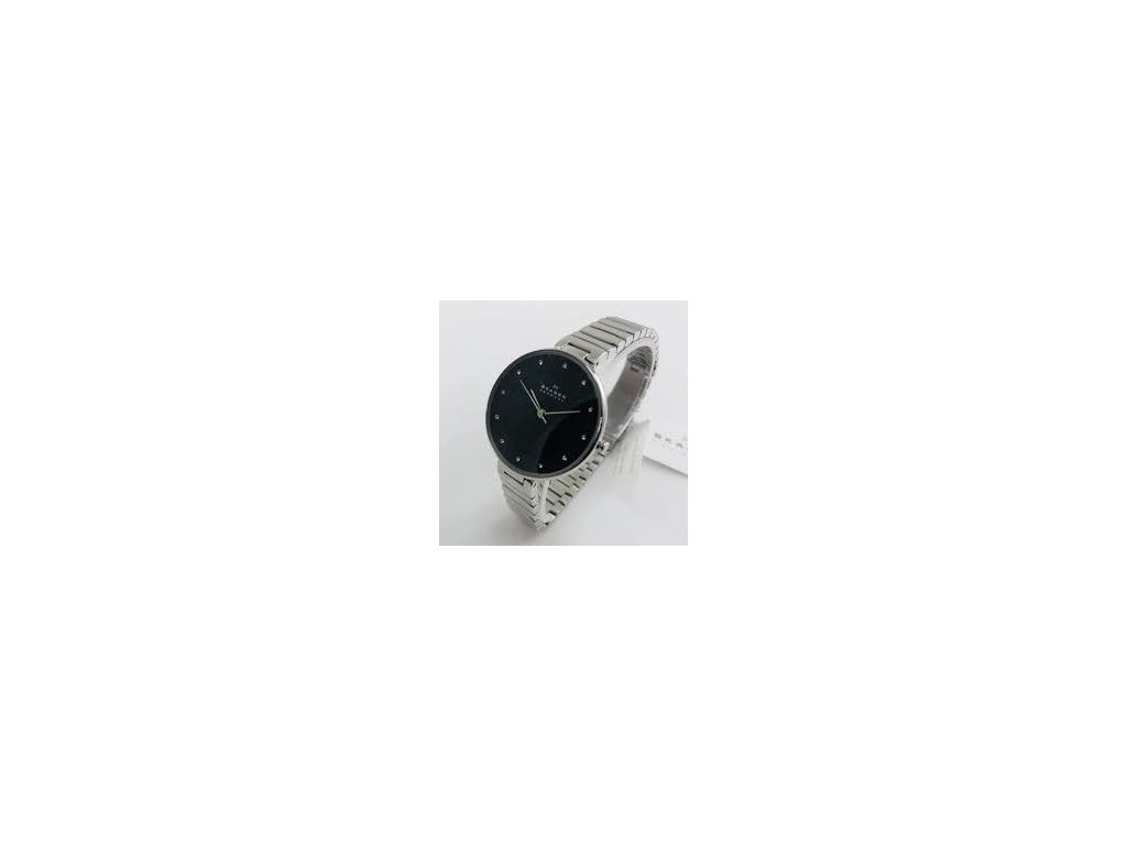 hodinky SKAGEN SKW2225
