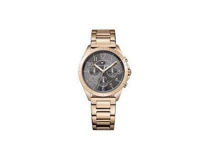 hodinky TOMMY HILFIGER 1781606
