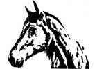 Koňské