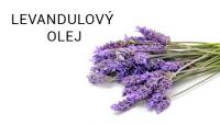 LEVANDULE_small