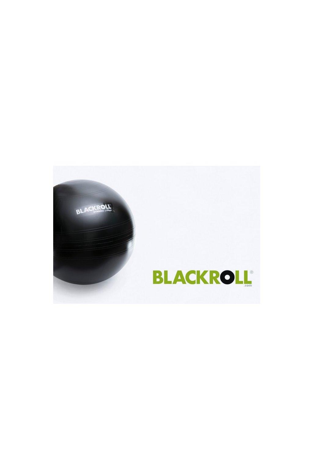 2368 1 blackroll gymball65 web(1)
