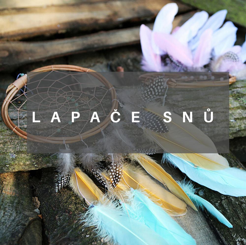 lapace_snu