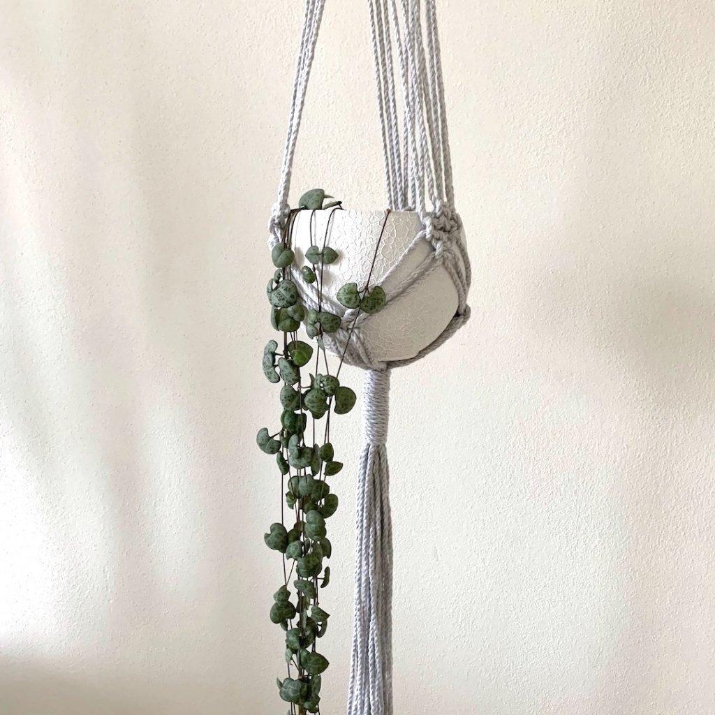 závěs na rostliny šedý