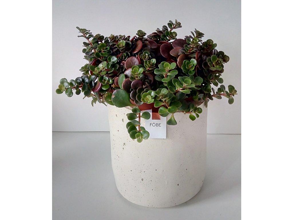 Květináč RÓT WHITE