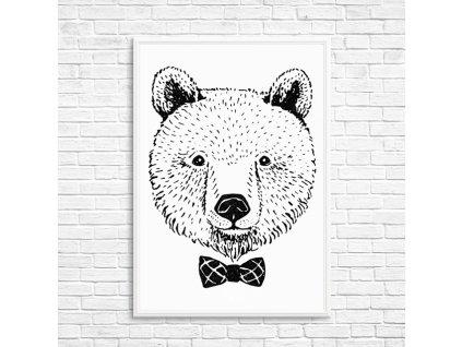 plakát medvěd