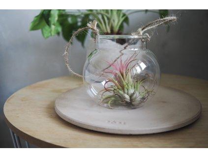 skleněný květináč