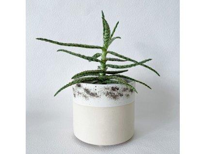 Kvetinace keramika