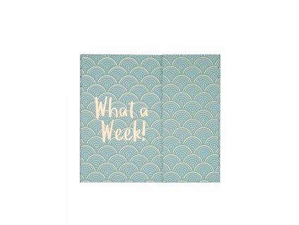 Plánovač ,,WHAT A WEEK,,