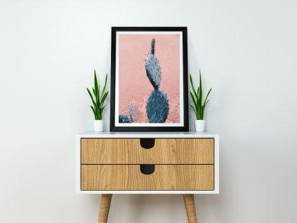 Pink Kaktus