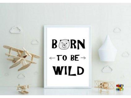 Plakát ,,BORN,,
