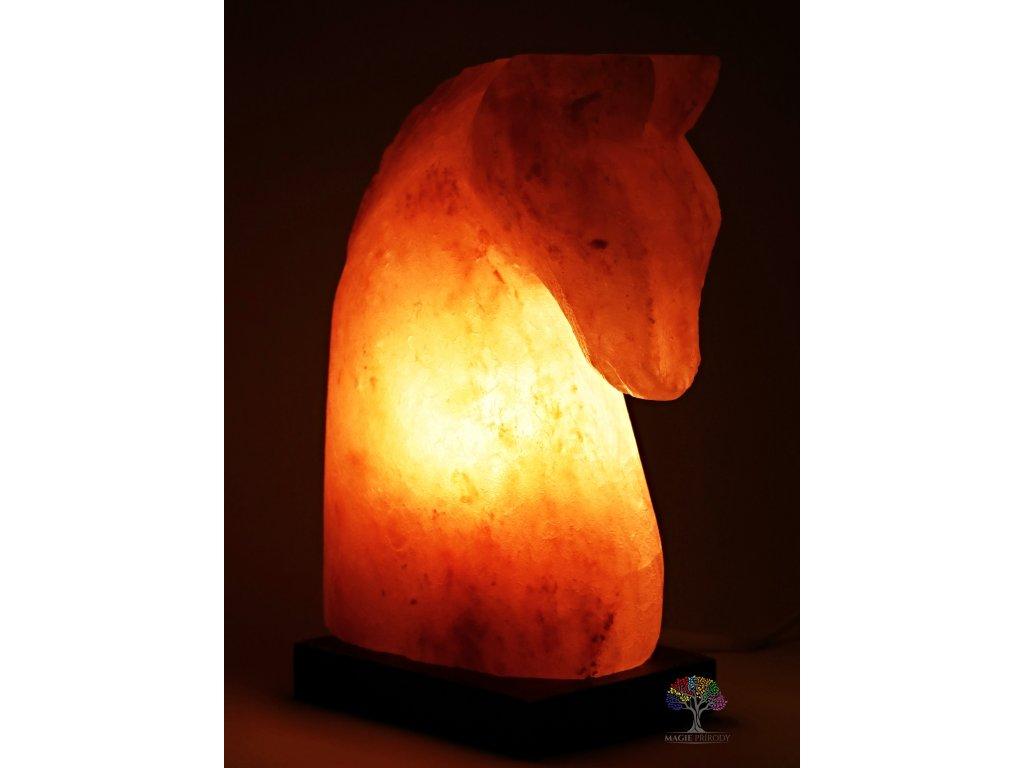 Solná lampa elektrická Kůň - 3 - 4 Kg #03
