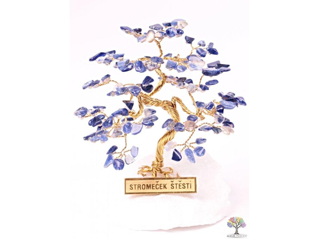 Sodalitový stromeček štěstí 9 cm - R4 - #173  + sleva 5% po registraci na většinu zboží + dárek k objednávce