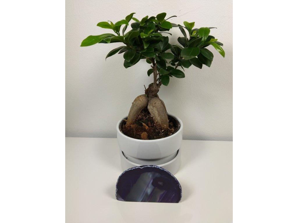 Achát fialový 14 - 0,46 kg