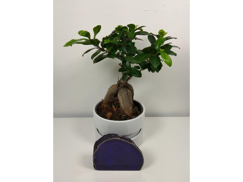 Achát fialový 17 - 0,52 kg