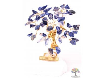 Sodalitový stromeček štěstí 9 cm - R3 - #154  + sleva 5% po registraci na většinu zboží + dárek k objednávce