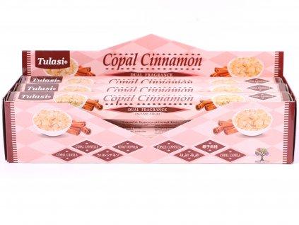 Vonné tyčinky Tulasi Copal Cinnamon - 20 ks - #74  + sleva 5% po registraci na většinu zboží + dárek k objednávce
