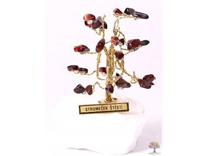 Byčí oko stromeček štěstí 6 cm - R0 - #179  + sleva 5% po registraci na většinu zboží + dárek k objednávce