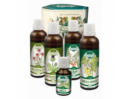 doplnek z byliny jako pomoc pri zlepseni cinnosti cevniho systemu
