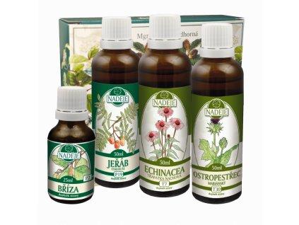 doplnek z byliny jako pomoc pri zlepseni cinnosti cevniho systemu1
