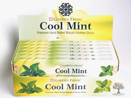 Vonné tyčinky Garden Fresh Premium Cool Mint - 12 ks - #31