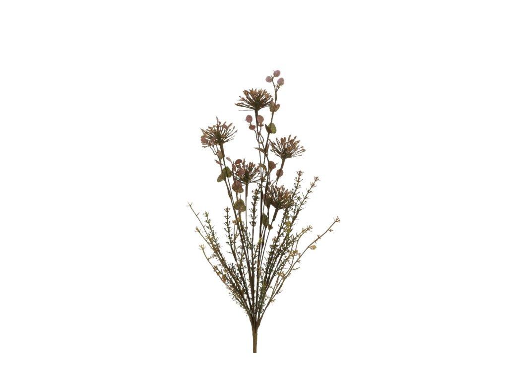 květina sušený