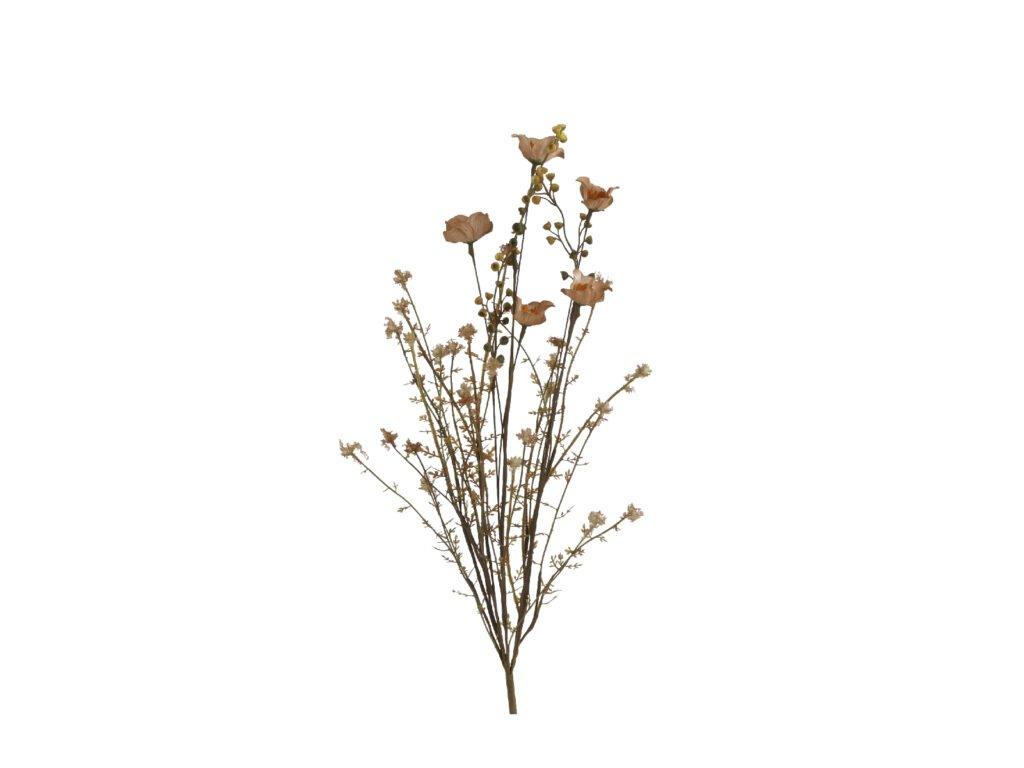 květina sušený vzhled