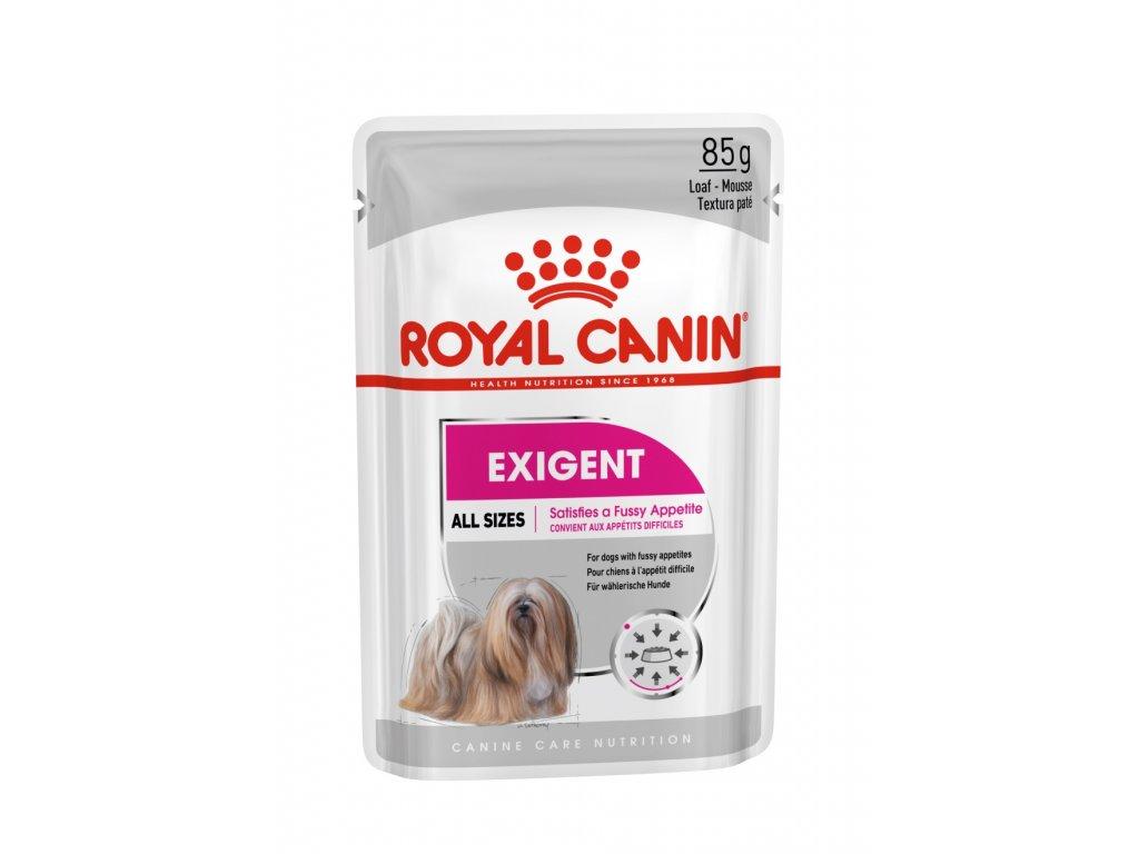 8 exigent dog loaf 12x