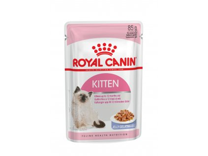 8 kitten instinctive jelly 12x