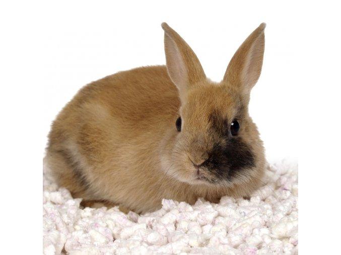 533 Asan pet aloe family 45 l