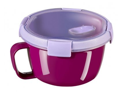 Box Curver® Smart2GO Noodles 0.9L, fialový