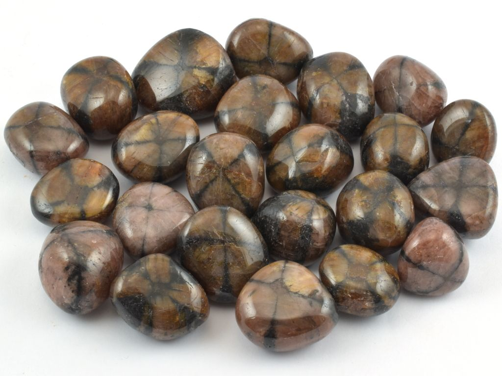 Tromlované chiastolity velikosti 2 - 3 cm.