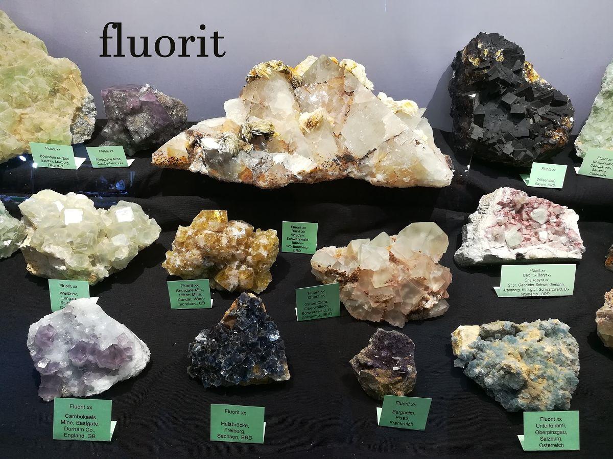 fluority-4