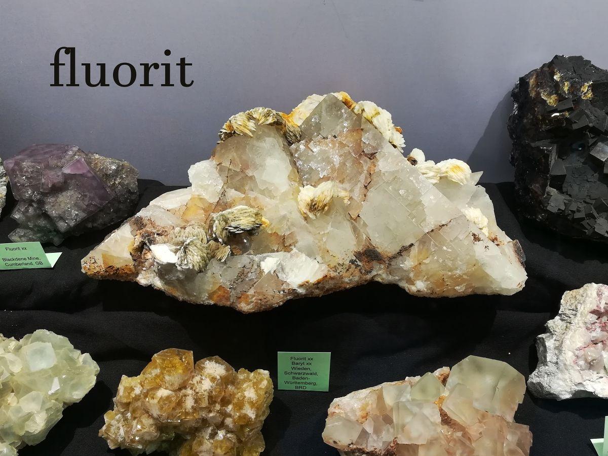 fluority-7