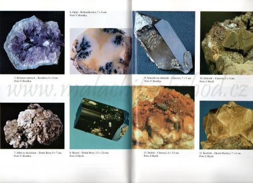 mineraly-bernard-2