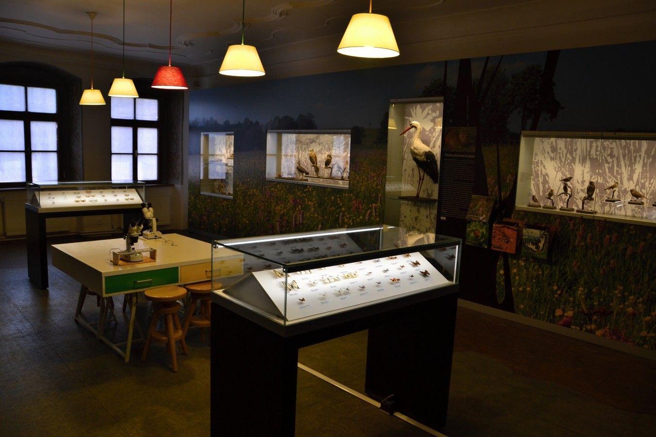 muzeum-vysociny-jihlava-otevrena-krajina