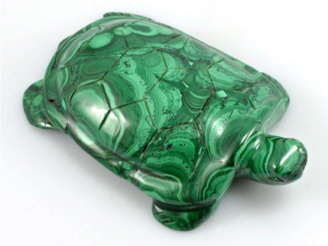 Malachit - želva (1)