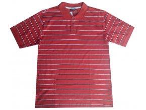 Pánské tričko Alpine Pro Polo červené | Malechas