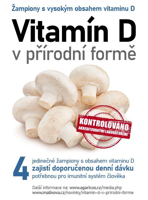 zampiony_vitamin_D