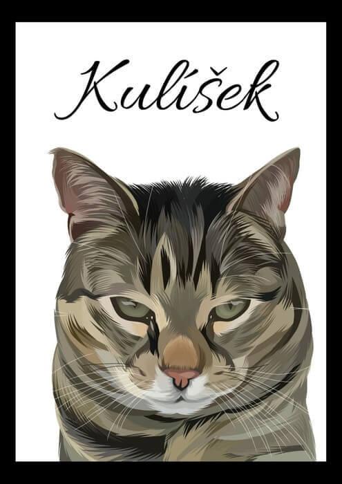 Malovaný portrét kočky
