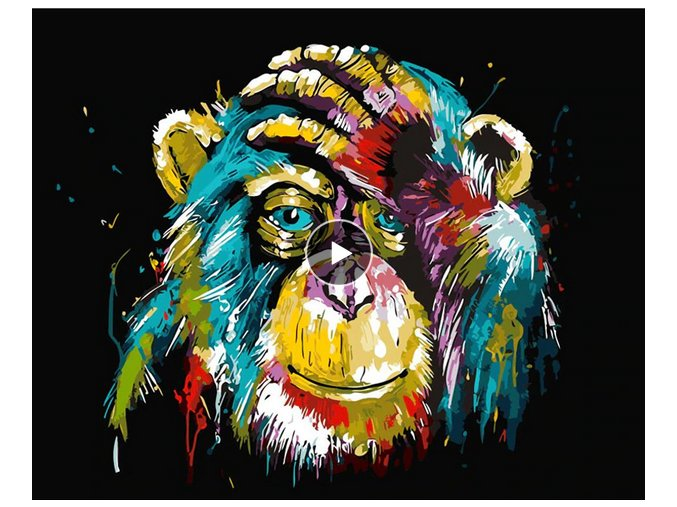 2019 09 29 11 49 15 GATYZTORY Frameless Baboon Animal DIY Painting By Number Wall Art Picture Paint