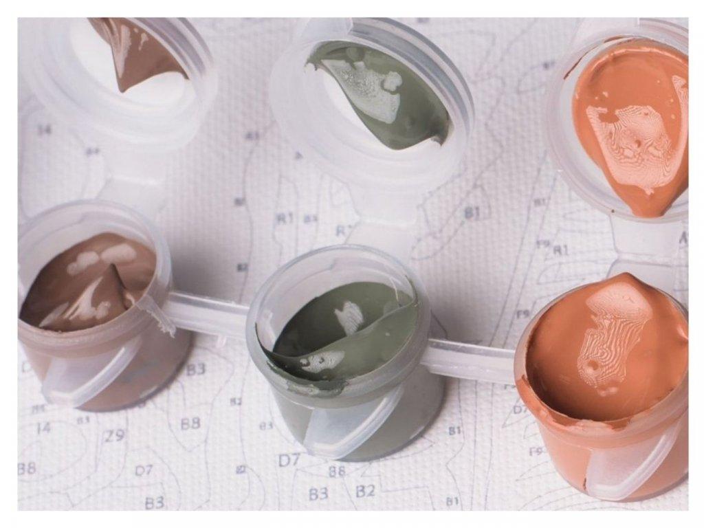 Malování podle čísel  - AKRYLOVÉ BARVY (VÝBĚR 243 odstínů)