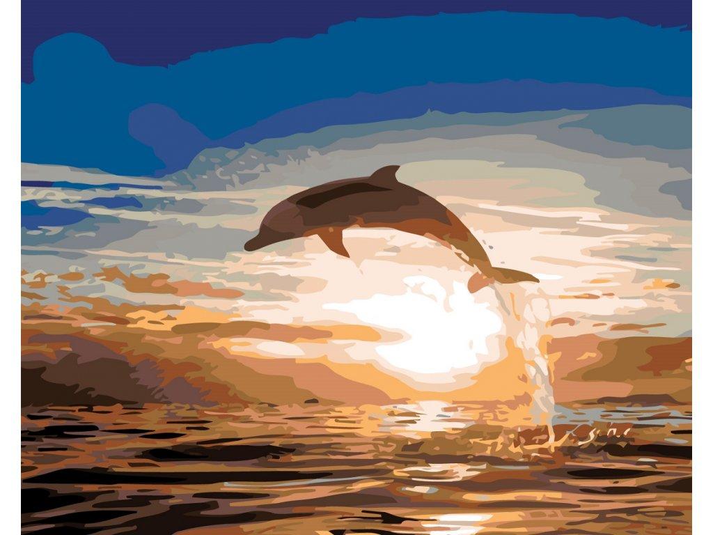 337 4 malovani podle cisel skakajici delfin