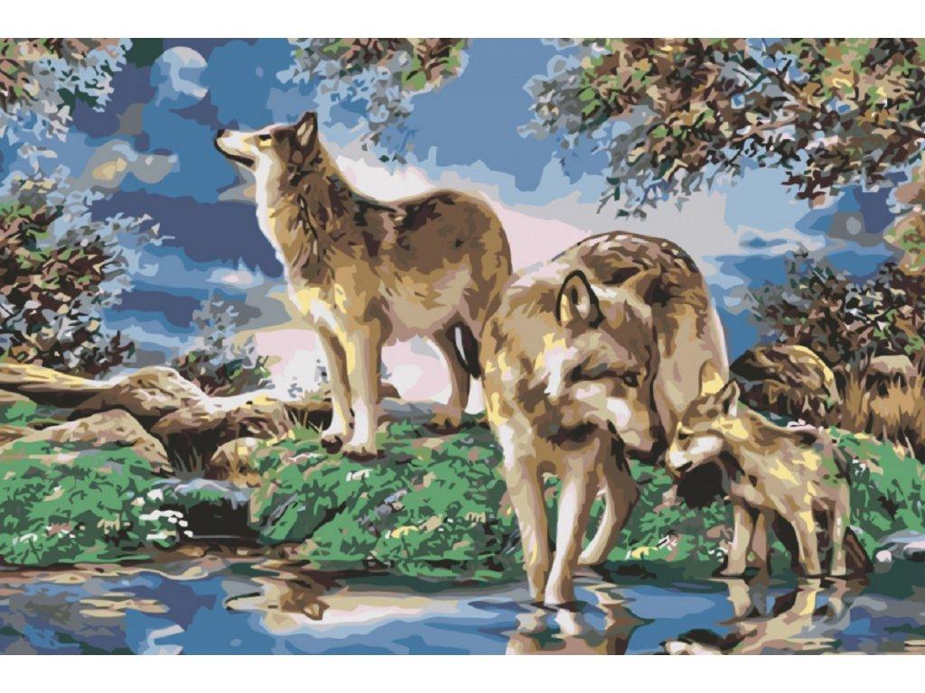 Malování podle čísel - VLČÍ RODINKA (Rámování vypnuté plátno na rám, Rozměr 80x120 cm)