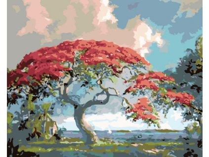 Malování podle čísel - RUDÁ BONSAI (Rámování vypnuté plátno na rám, Rozměr 80x100 cm)