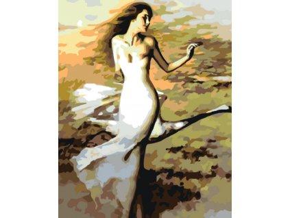 Malování podle čísel - TANČÍCÍ ŽENA V BÍLÉM