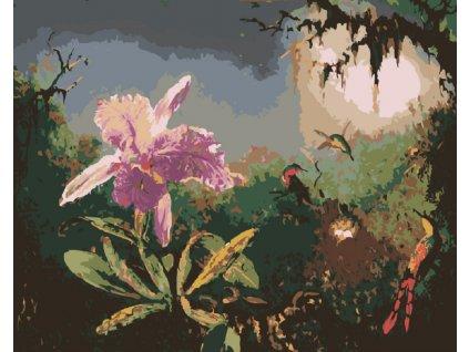 Malování podle čísel - PŘÍRODA V PODVEČER (Rámování vypnuté plátno na rám, Rozměr 80x100 cm)