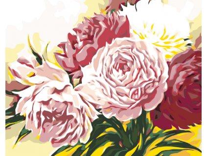 Malování podle čísel - RŮŽOVÉ PIVOŇKY (Rámování vypnuté plátno na rám, Rozměr 80x100 cm)
